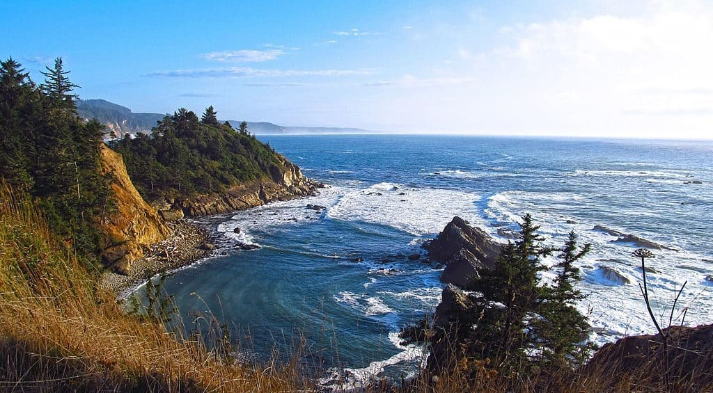 Cape Arago Overlook